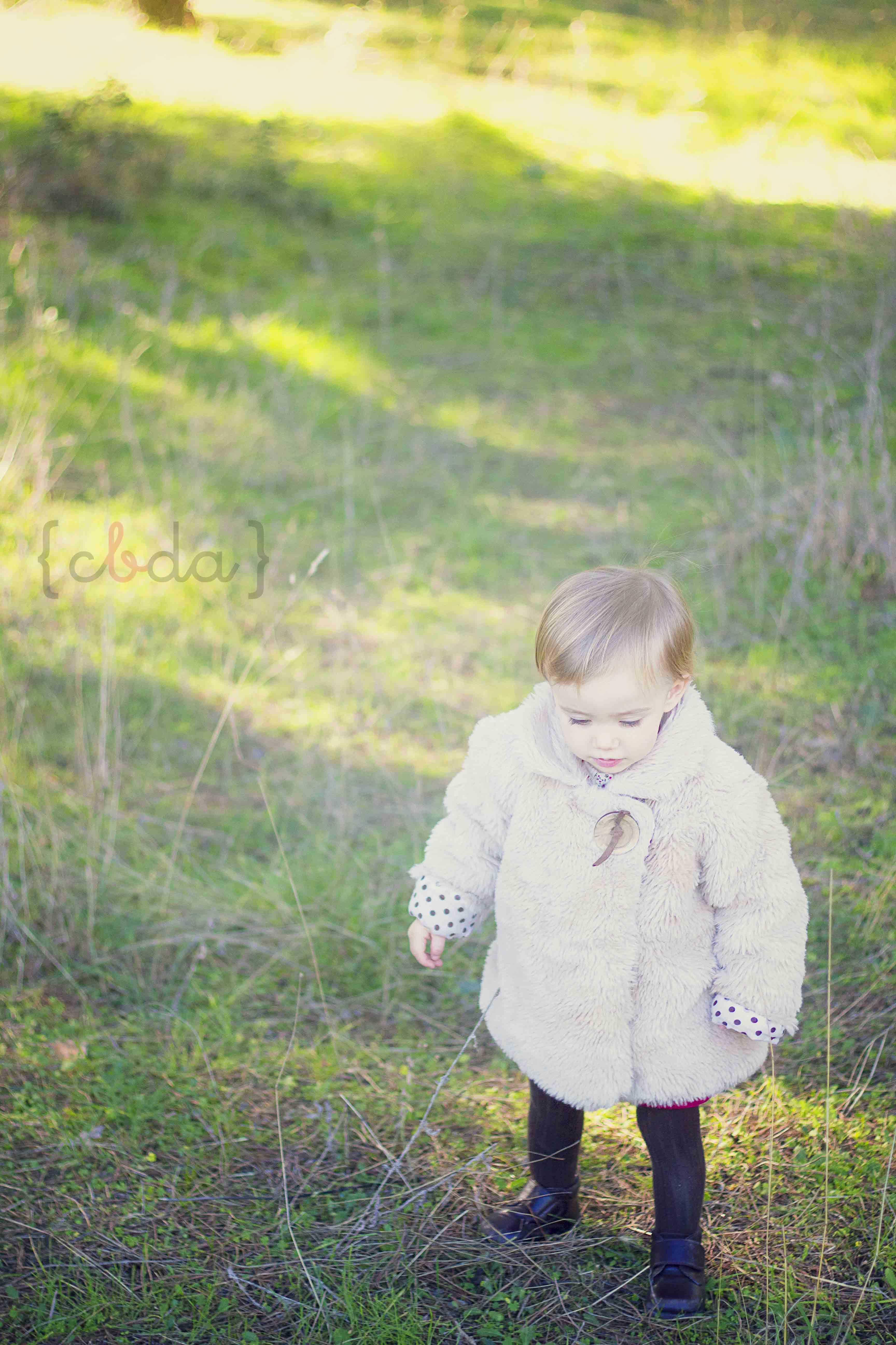 Un paseo por el campo